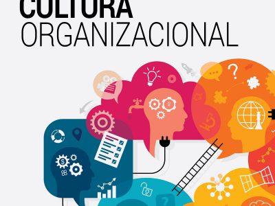 Curso Cultura Organizacional