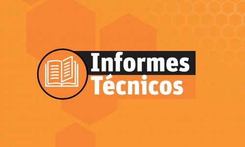 Curso Redacción de Informes Técnicos Organizacionales.